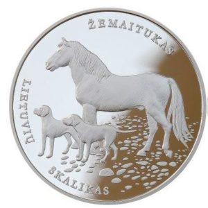 cane e cavallo