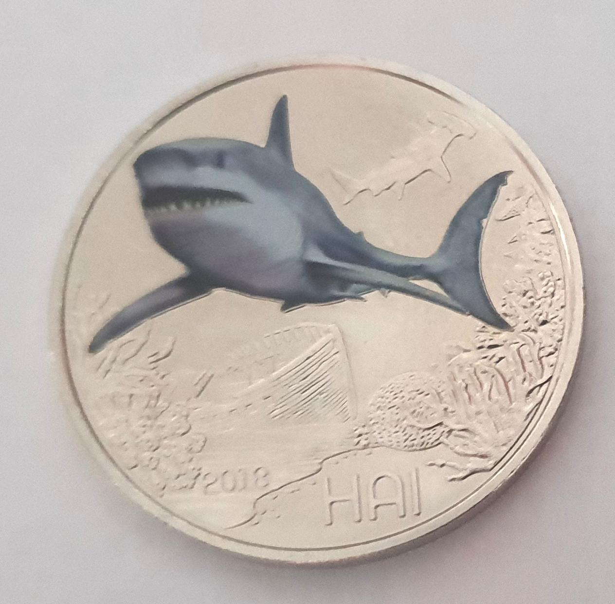 squalo_ritagliato